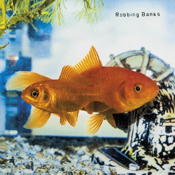 RobbingBanks 2 HR Voorkant1600x1600